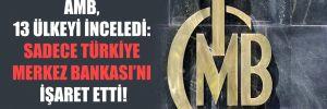 AMB, 13 ülkeyi inceledi: Sadece Türkiye Merkez Bankası'nı işaret etti!