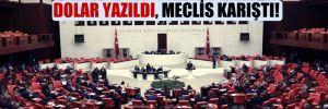 AKP'nin yasa teklifinde TL yerine Dolar yazıldı, Meclis karıştı!