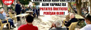 CHP'li Gürer: TMO ve Tarım Kredi Kooperatifleri alım yapmaz ise patates üreticisi perişan olur!