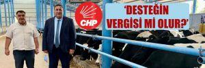 CHP'li Gürer: Üretici ve tüketici mağdur, aracının keyfi yerinde!