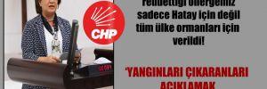 CHP'li Şahin: AKP ve MHP'nin reddettiği önergemiz sadece Hatay için değil tüm ülke ormanları için verildi!