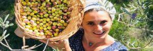 Aslıhan Gürbüz zeytin hasadına başladı