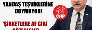 CHP'li Bülbül: AKP, yandaş teşviklerine doymuyor!