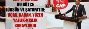 CHP'li Ceylan: Bu bütçe lüksün ve şatafatın; uçan, kaçan, yüzen yazlık-kışlık sarayların bütçesidir!