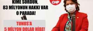 CHP'li Şahin: Kime sordun, 83 milyonun hakkı var o parada!