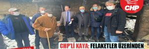 CHP Heyeti Araklı yangın bölgesinde! CHP'li Kaya: Felaketler üzerinden siyaset olmaz!