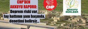 CHP'den Akkuyu raporu: Deprem riski var, fay hattının yanı başında, denetimi belirsiz…
