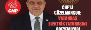 CHP'li Güzelmansur: Vatandaş elektrik faturasını ödeyemiyor!