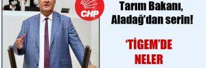 CHP'li Gürer: Tarım Bakanı, Aladağ'dan serin!