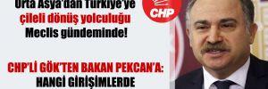 Türk TIR'larının Orta Asya'dan Türkiye'ye çileli dönüş yolculuğu Meclis gündeminde!