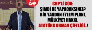 CHP'li Gök: Şimdi ne yapacaksınız? Bir yandan eylem planı, mülkiyet hakkı, Atatürk Orman Çiftliği..!