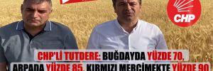 CHP'li Tutdere:  Buğdayda yüzde 70, arpada yüzde 85, kırmızı mercimekte yüzde 90 rekolte kaybı var!