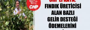 CHP'li Kaya: Fındık üreticisi alan bazlı gelir desteği ödemelerini bekliyor!