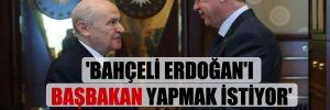 'Bahçeli Erdoğan'ı başbakan yapmak istiyor'
