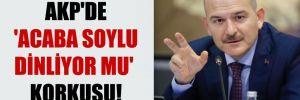 AKP'de 'Acaba Soylu dinliyor mu' korkusu!