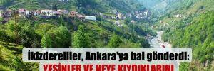 İkizdereliler, Ankara'ya bal gönderdi: Yesinler ve neye kıydıklarını görsünler