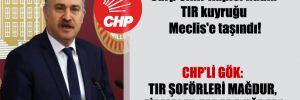 Sarp Sınır Kapısı'ndaki TIR kuyruğu Meclis'e taşındı!  CHP'li Gök: TIR şoförleri mağdur, firmalar zarara uğradı