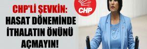CHP'li Şevkin: Hasat döneminde ithalatın önünü açmayın!