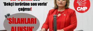 CHP'li Şevkin'den 'Bekçi terörüne son verin' çağrısı! 'Silahları alınsın'