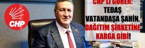 CHP'li Gürer: TEDAŞ vatandaşa şahin, dağıtım şirketine karga gibi!