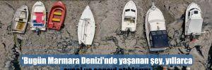 'Bugün Marmara Denizi'nde yaşanan şey, yıllarca evsel ve sanayi atıklarını arıtmaktan kaçmanın bir sonucu'