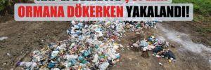 AKP'li belediye çöpleri ormana dökerken yakalandı!