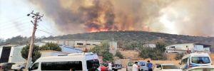 Orman yangınlarıyla mücadele devam ediyor