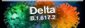'Delta varyantı aşısızların pandemisidir'
