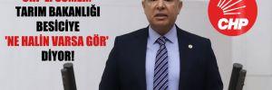 CHP'li Sümer: Tarım Bakanlığı besiciye 'Ne halin varsa gör' diyor!