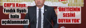 CHP'li Kaya: Fındık fiyatı hala açıklanmadı!