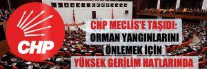CHP Meclis'e taşıdı: Orman yangınlarını önlemek için yüksek gerilim hatlarında yeterli önlem alınıyor mu?
