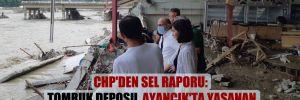 CHP'den sel raporu: Tomruk deposu, Ayancık'ta yaşanan felaketin sonuçlarını daha da ağırlaştırmış!