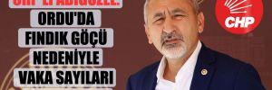 CHP'li Adıgüzel: Ordu'da fındık göçü nedeniyle vaka sayıları 10 kat arttı