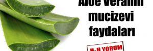 Aloe Veranın mucizevi faydaları
