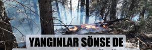 Yangınlar sönse de dumanın etkisi sürüyor!