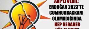 AKP'li vekil: Erdoğan 2023'te Cumhurbaşkanı olamadığında hep beraber kül oluruz!