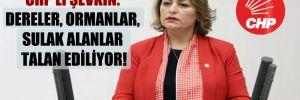CHP'li Şevkin: Dereler, ormanlar, sulak alanlar talan ediliyor!