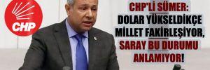 CHP'li Sümer: Dolar yükseldikçe millet fakirleşiyor Saray bu durumu anlamıyor!