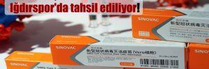 Sinovac aşılarının faturaları Iğdırspor'da tahsil ediliyor!
