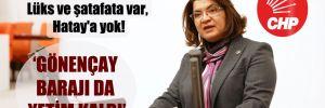 CHP'li Şahin: Lüks ve şatafata var, Hatay'a yok!