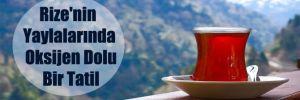 Rize'nin Yaylalarında Oksijen Dolu Bir Tatil
