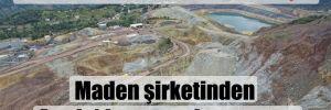 Siyanür sızmasıyla gündeme gelmişti! Maden şirketinden Artvin'de orman başvurusu