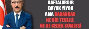 'Türk lirası haftalardır dayak yiyor ama bakandan ne bir teselli, ne de keder cümlesi işitilmiyor'