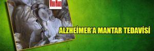 Alzheimer'a mantar tedavisi