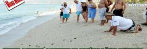 Yavru caretta carettalar denizle böyle buluştu