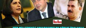 'Her milletvekili arkadaşımız bu süreci Öcalan'la  yüz yüze görüşmek isterdi'