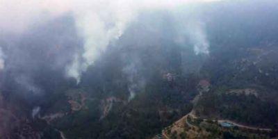 Teröristler kaçarken ormanları yaktı!
