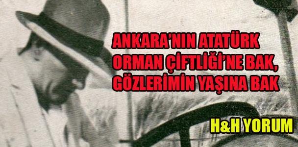 Ankara'nın Atatürk Orman Çiftliği'ne bak, gözlerimin yaşına bak
