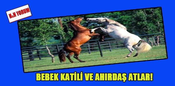 Bebek katili ve ahırdaş atlar!