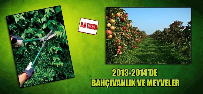 2013-2014'de bahçıvanlık ve meyveler